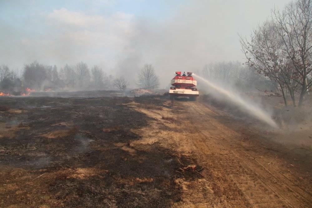 Was ist wenn der Wald brennt? Feuerloeschpanzer.de