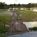 Hochwasser - Flut 2013 (3)